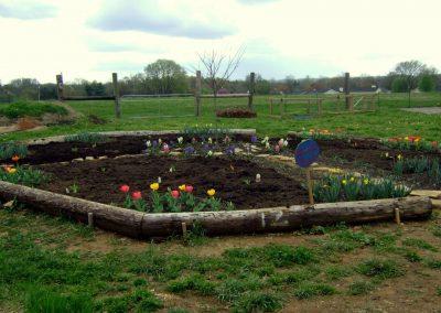 bf-garden